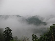 takahashi5.jpg